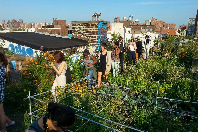 Imagen de gente visitando un jardín urbano en una azotea.