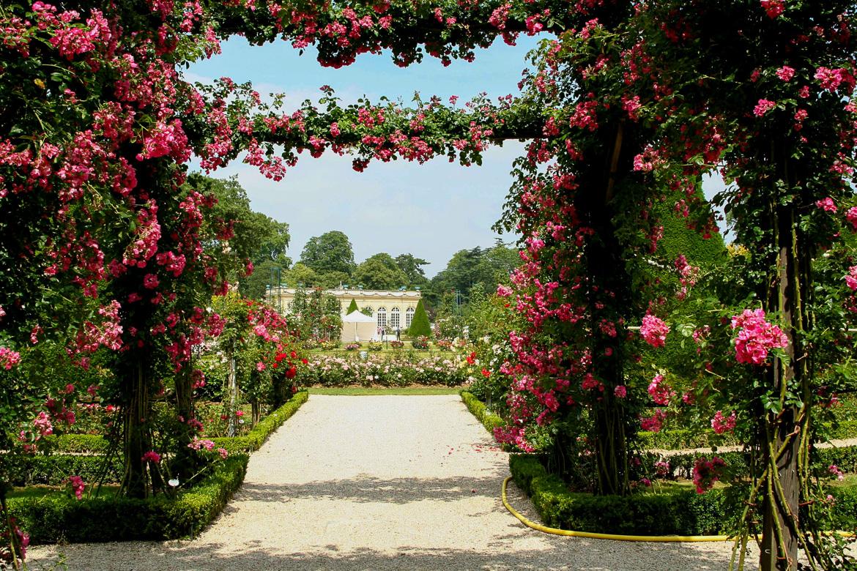 Imagen del pasaje abovedado cubierta de rosas en el parque de Bagatelle de París