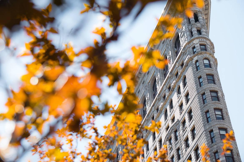 Imagen del edificio Flatiron con hojas de otoño.