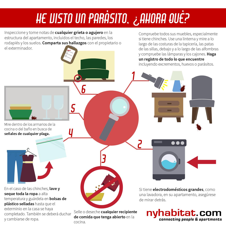 Infográfico de New York Habitat que presenta 6 consejos prácticos para los inquilinos que han descubierto ratones, cucarachas o chinches en sus apartamentos.