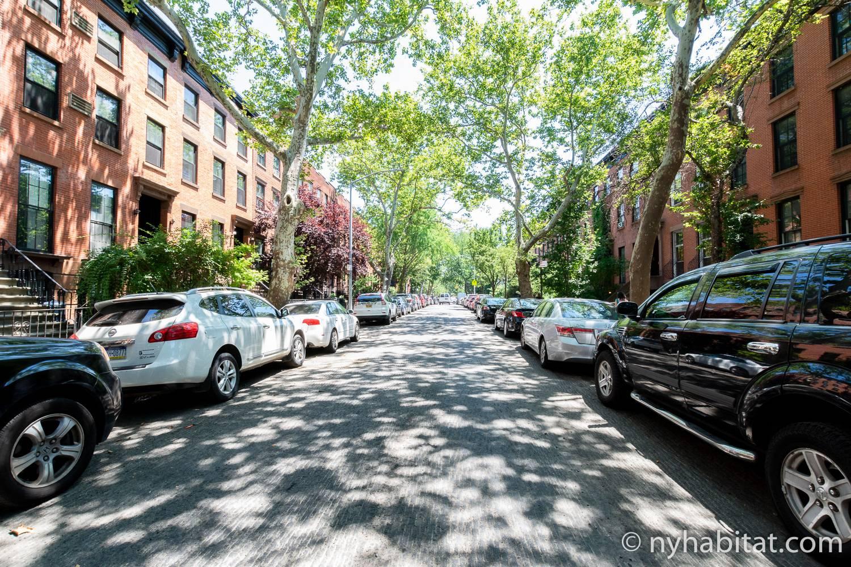 Imagen de la calle arbolada en la que se encuentra el apartamento NY-17602.